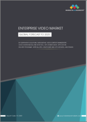 Enterprise Video Market by Component (Solutions (Webcasting, Video Content Management, Video Conferencing) and Services), Deployment Mode, Application, Delivery Technique, Vertical (BFSI, Healthcare and Life Sciences), & Region - Global Forecast to 2025