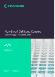 Non-Small Cell Lung Cancer - Epidemiology Forecast to 2029