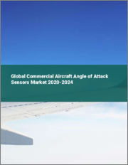 Global Commercial Aircraft Angle of Attack Sensors Market 2020-2024