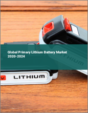 Global Primary Lithium Battery Market 2020-2024