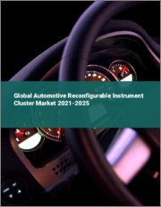 Global Automotive Reconfigurable Instrument Cluster Market 2021-2025