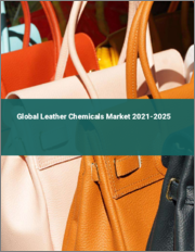 Global Leather Chemicals Market 2021-2025