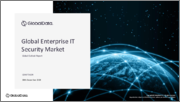 Global Enterprise IT Security Market Outlook to 2024