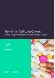 Non-Small Cell Lung Cancer - Global Drug Forecast and Market Analysis to 2029