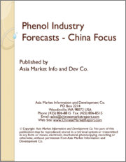 Phenol Industry Forecasts - China Focus