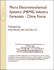 Micro Electromechanical Systems (MEMS) Industry Forecasts - China Focus