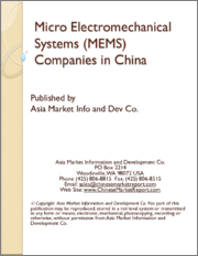 Micro Electromechanical Systems (MEMS) Companies in China