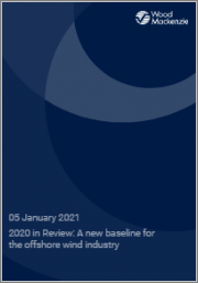 2020 in Review: A New Baseline for the Offshore Wind Industry