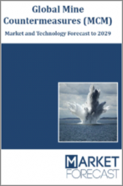 Global Mine Countermeasures (MCM) - Market and Technology Forecast to 2029: Market Forecasts by Region, Platform, and Fitment, Market and Technology Overview, Country, Scenario, Covid-19 and Opportunity Analysis, and Leading Company Profiles