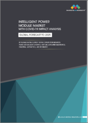 Intelligent Power Module Market With COVID-19 Impact Analysis by Voltage Rating, Current Rating, Circuit Configuration, Power Devices, Vertical (Consumer Electronics, Industrial, Automotive), and Region - Global Forecast to 2025