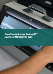 Global Nondestructive Testing (NDT) Equipment Market 2021-2025
