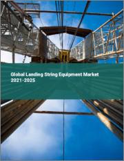 Global Landing String Equipment Market 2021-2025