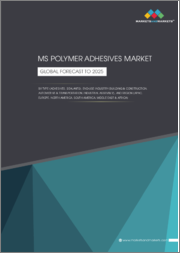 MS Polymer Adhesives Market by Type (Adhesives, Sealants), End-Use Industry (Building & Construction, Automotive & Transportation, Industrial Assembly), & Region (APAC, Europe, North America, South America, Middle East & Africa)-Global Forecast to 2025
