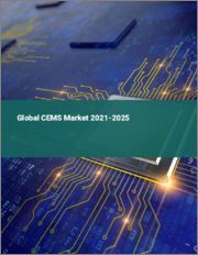Global CEMS Market 2021-2025