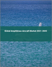 Global Amphibious Aircraft Market 2021-2025