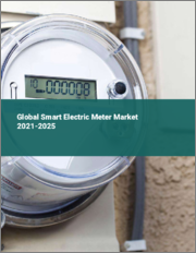 Global Smart Electric Meter Market 2021-2025