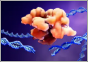 The 2020 Market for CRISPR/Cas9 Genome Editing Products