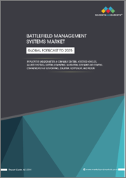 Battlefield Management Systems Market by Solution (Hardware, Software) Platform (Armored Vehicles, Headquarter, and Command Centers, Soldier Systems), System, Component, Installation Type, End-User, Region - Global Forecast to 2025