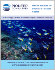 Marine Services for Undersea Telecom Cables