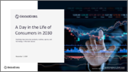 A Day in the Life of Consumers in 2030 - Exploring New Consumer products, Routines, Spaces, and Technology in the Next Decade