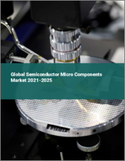 Global Semiconductor Micro Components Market 2021-2025