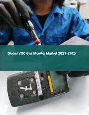 Global VOC Gas Monitor Market 2021-2025