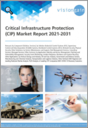 Critical Infrastructure Protection (CIP) Market Report 2021-2031: Forecasts by Component, by Solution, by Service, by Application, by Vertical, Regional and Leading National Market Analysis, Leading CIP Companies, COVID-19 Recovery Scenarios