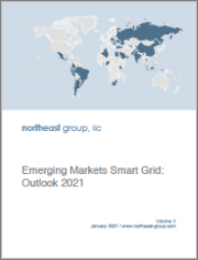 Emerging Markets Smart Grid: Outlook 2021