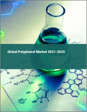 Global Polyphenol Market 2021-2025