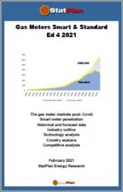 Gas Meters Smart & Standard Ed 4 2021