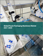Global Pouch Packaging Machinery Market 2021-2025