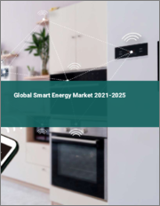Global Smart Energy Market 2021-2025