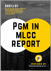 Palladium and Silver Demand in Multilayered Ceramic Chip Capacitors: 2021-2025 Market Outlook
