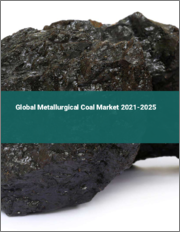 Global Metallurgical Coal Market 2021-2025