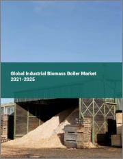 Global Industrial Biomass Boiler Market 2021-2025