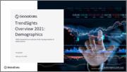 Demographics - TrendSights Analysis 2021