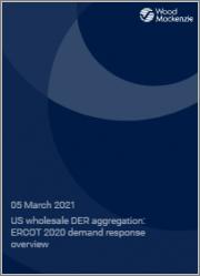 US Wholesale DER Aggregation: ERCOT 2020 Demand Response Overview