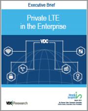 Private LTE in the Enterprise