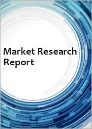 U.S. First Responder Wireless Services Forecast, 2021-2025