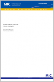 Development of the Chinese IoV Market and Industry (pre-order)