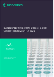 IgA Nephropathy (Berger's Disease) - Global Clinical Trials Review, H1, 2021
