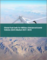 Global Fuel Cells for Military Unmanned Aerial Vehicle (UAV) Market 2021-2025