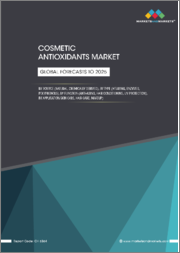 Cosmetic Antioxidants Market by Source (Natural, Chemically Derived), Type (Vitamins, Enzymes, Polyphenols), Function (Anti-aging, Hair Conditioning, UV Protection) and Application (Skin Care, Hair Care, Make-up) - Global Forecasts to 2025
