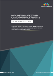 Pyrometer Market with COVID-19 Impact Analysis, by Type (Fixed, Handheld), Technology (Optical, Infrared), Wavelength (Single Wavelength, Multiwavelength), End-user Industry (Ceramics, Glass, Metal Processing), and Geography - Global Forecast to 2025
