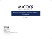 Heat Recovery Steam Generators (HRSGs)