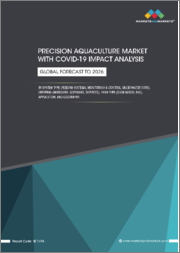 Precision Aquaculture Market with Covid-19 Impact Analysis by System Type (Feeding Systems, Monitoring & Control, Underwater ROVs), Offering (Hardware, Software, Services), Farm Type (Cage-based, RAS), Application, & Geography - Global Forecast to 2026