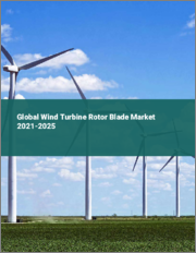 Global Wind Turbine Rotor Blade Market 2021-2025
