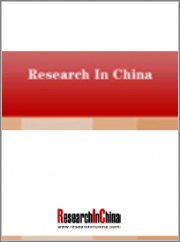 Global and China HD Map Industry Report, 2021